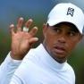 """Konkursas """"helloween'o belaukiant"""" - paskutinis pranešimas Tiger_Woods"""